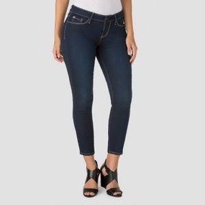 Lévis Denizen Modern Ankle Skinny Midrise Jean